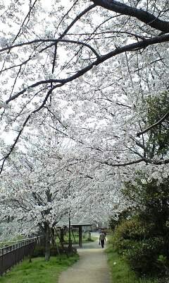 090405_1024~小菅�A.jpg