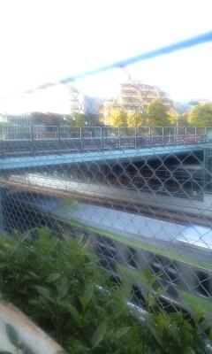 090415_1714~アメリカ橋.jpg