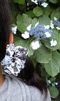 090621_1558~紫陽花とシュシュ.jpg