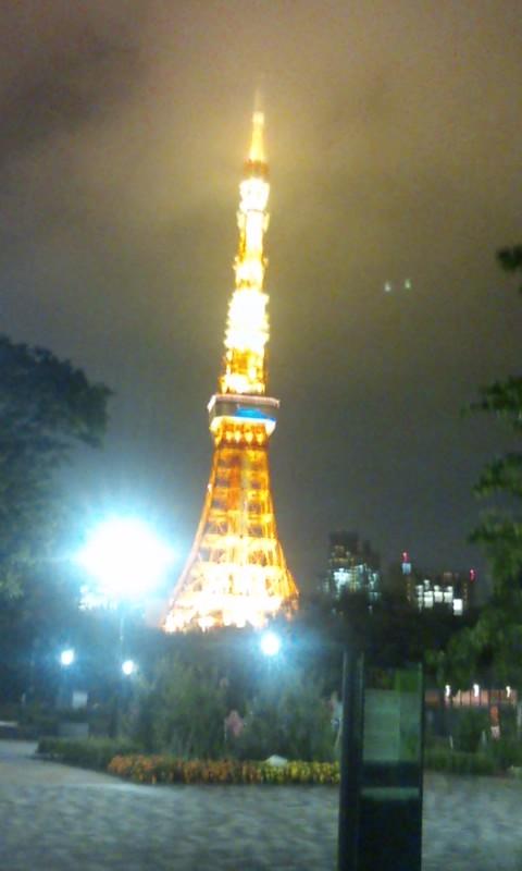 090622_2102~東京タワー炎上.jpg