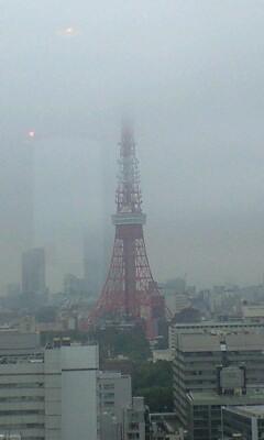 090702_1731~東京タワー�A.jpg