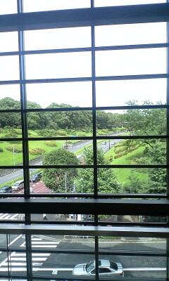 090708_1407~代々木公園を眺める�@.jpg