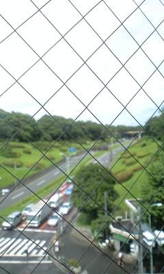 090708_1407~代々木公園を眺める�A.jpg