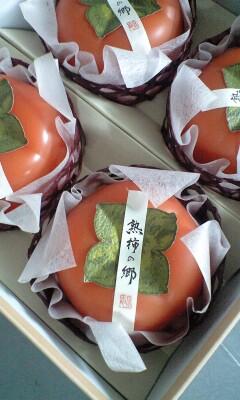 091014_1050~熟柿じゅくしの郷.jpg