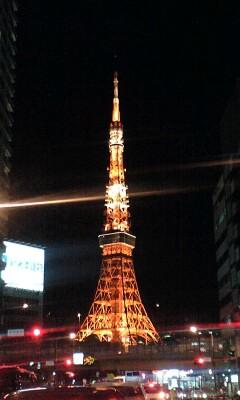 091207_1902~タワー夜景.jpg