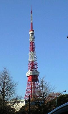 091208_0838~朝のタワー.jpg