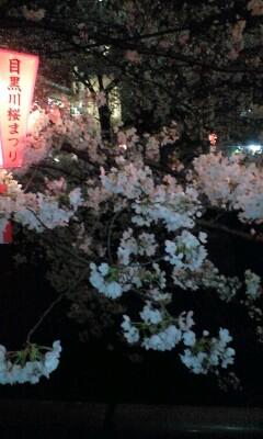 100331_2030~目黒川�A.jpg