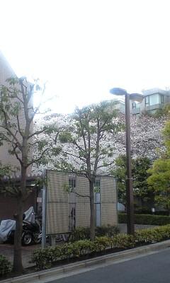 100401_1719~新坂�A.jpg