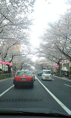 100403_1646~中野通り踏切付近.jpg