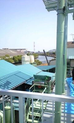 100612_1326~綾瀬川を眺める.jpg