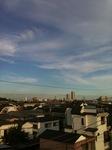 屋上風景1.JPG