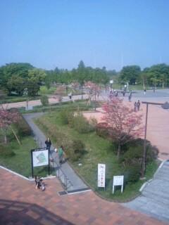 舎人公園�@.jpg