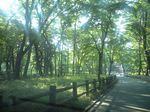 CA3A自然文化園1.JPG