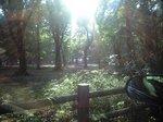 CA3A自然文化園2.JPG