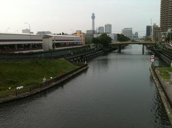 クローバー橋上より.JPG