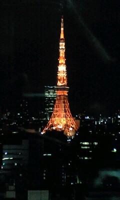 090515_2315~東京タワー.jpg