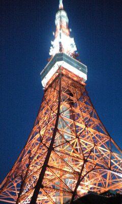 090828_1837~東京タワーライトアップ.jpg