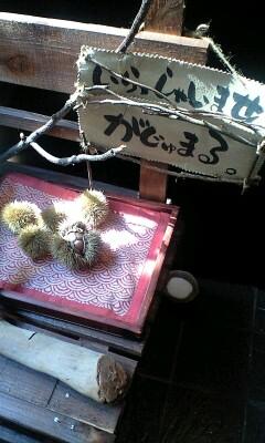 090917_1321~がじゅまるオブジェ.jpg